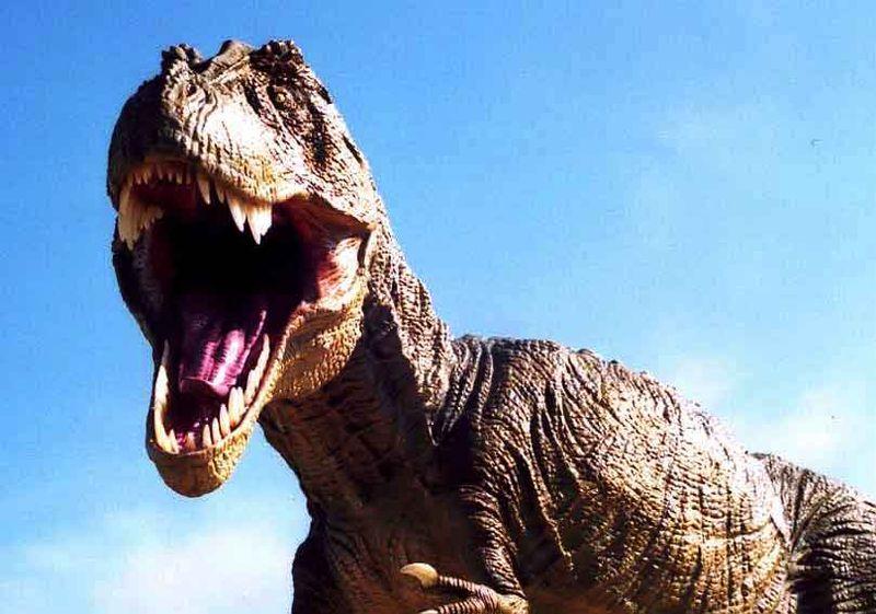 Tyrannosaurus-rex_1