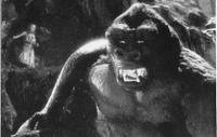 Kong6